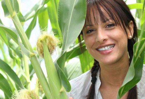 Как похудеть при помощи кукурузных рылец