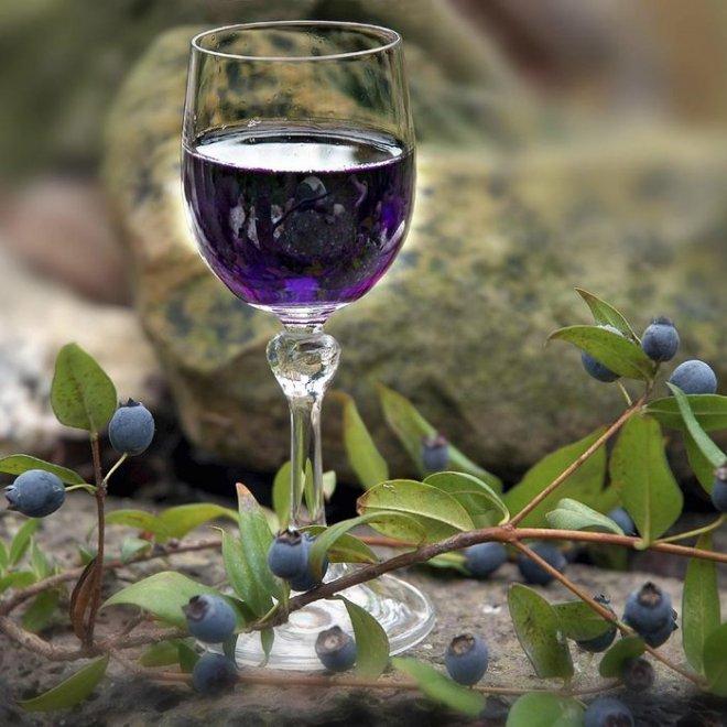 Домашнее вино из голубики