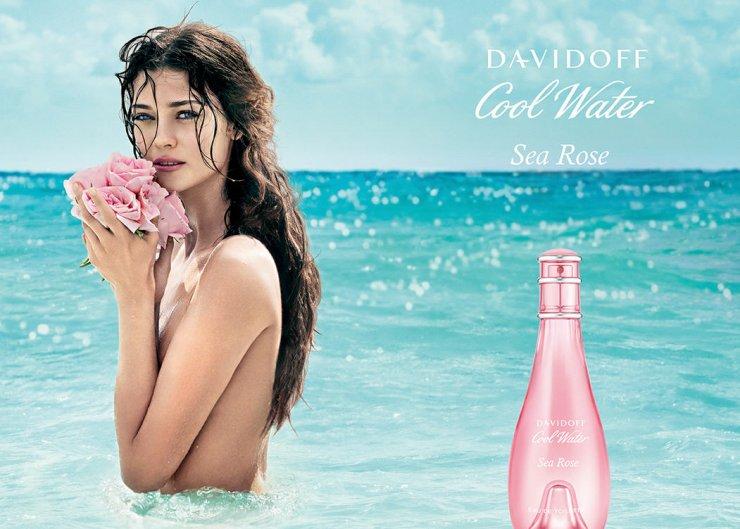 Cool Water Tender Sea Rose