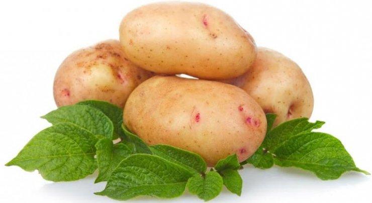 О пользе картофеля