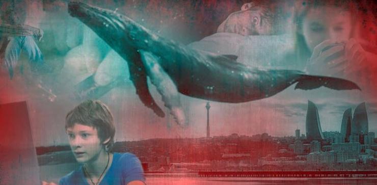 Чем опасен синий кит