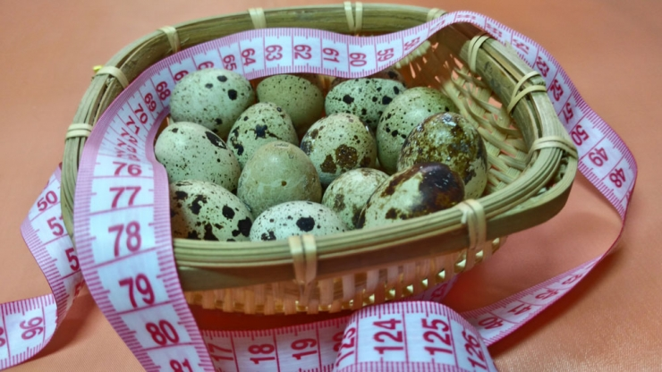 Яйца как диетический продукт