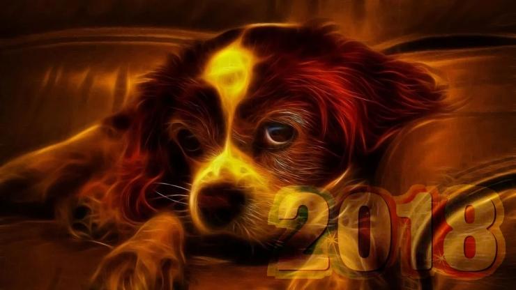 год огненной рыжей собаки