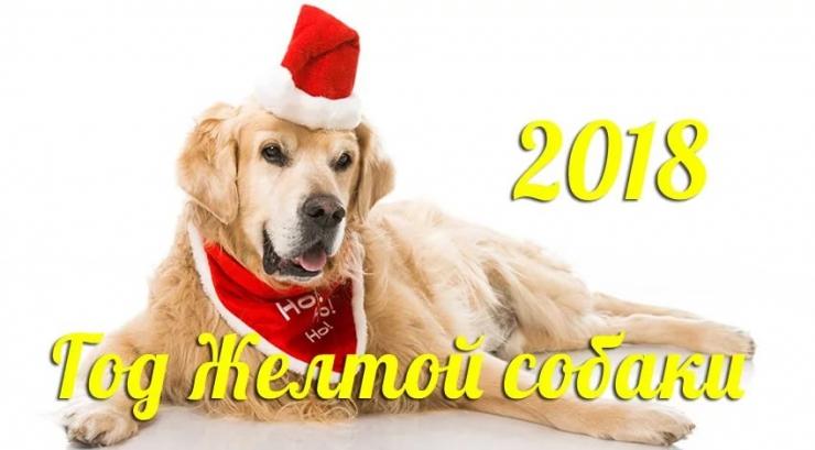 2018 год Желтой Земляной Собаки, что означает?