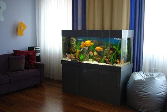 Условия содержания аквариумных рыб