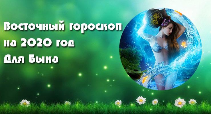 Водолей-Бык