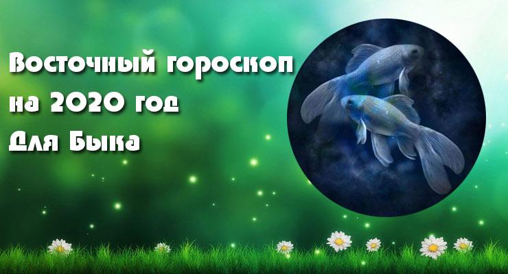 Рыбы-Бык