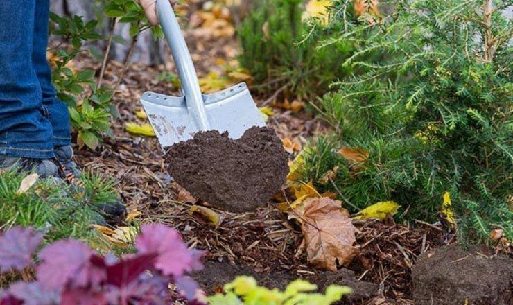 Подкорми почву осенью, получи богатый урожай летом